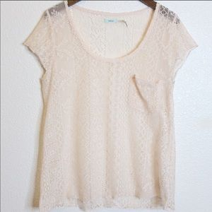 KIMCHI BLUE Cream Lace Short Sleeve Top